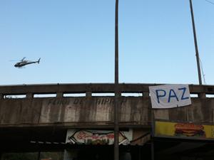 Mangueira (Foto: Robson Bonin/G1)