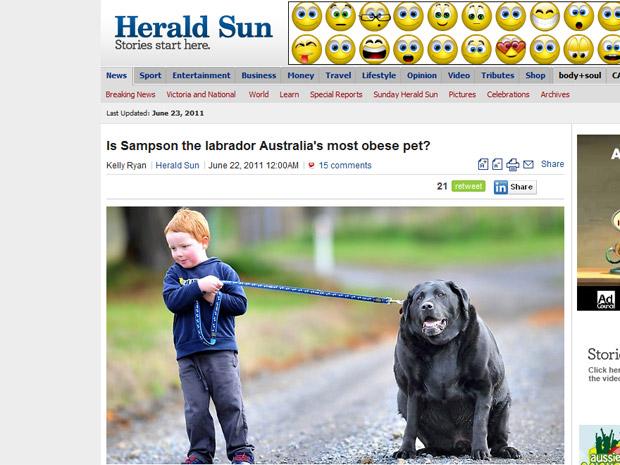 O cão australiano Samson em foto de jornal local (Foto: Reprodução)