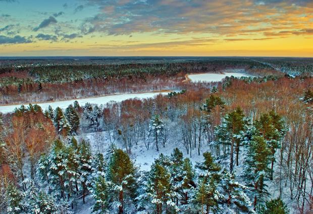 Vista do Parque Nacional de Müritz, na Alemanha, feita por Sandra Bartocha (Foto: Sandra Bartocha/BBC)