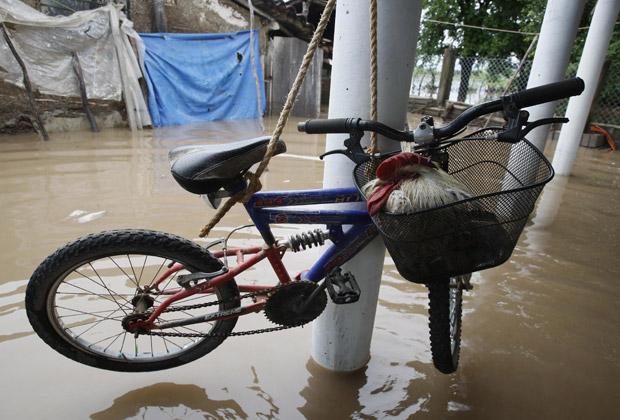 Galo procura abrigo da enchente em cestinha de bicicleta pendurada em poste em El Casadero Niltepec (Foto: Reuters)
