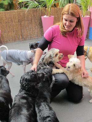 A veterinária Vanessa acha que a convivência entre os cães é o mais importante da creche. (Foto: Clara Velasco/G1)