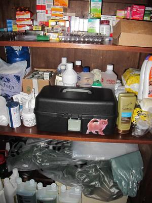 Armário reservado na casa da veterinária com medicamentos e suplementos utilizados pelo leão (Foto: Caroline Hasselmann/G1)