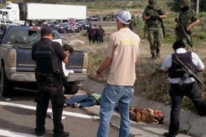 Corpos são encontrados após confrontos no México (Foto: STR / QUADRATIN / AFP)