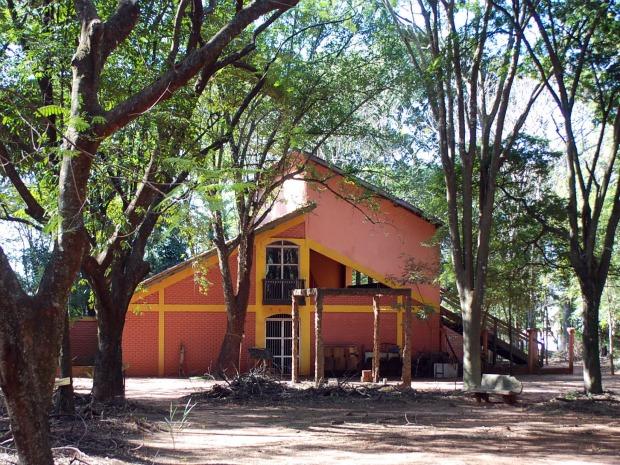 Leão solitário e depressivo está em zoológico desativado em Ivinhema (Foto: Divulgação/Ivinotícias)