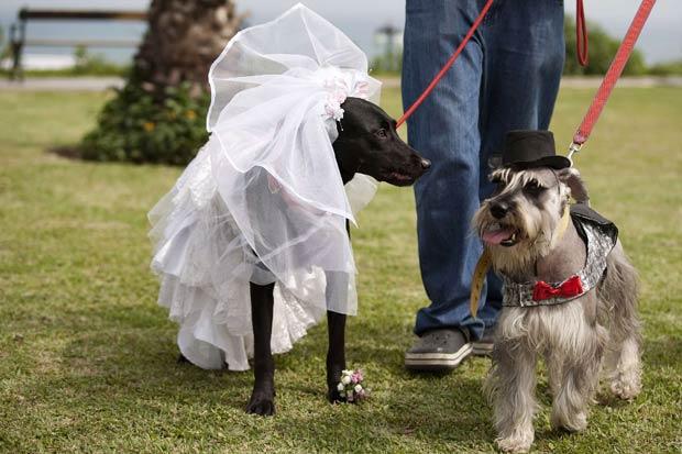 Casamento simbólico foi realizado no sábado. (Foto: Enrique Castro-Mendivil/Reuters)