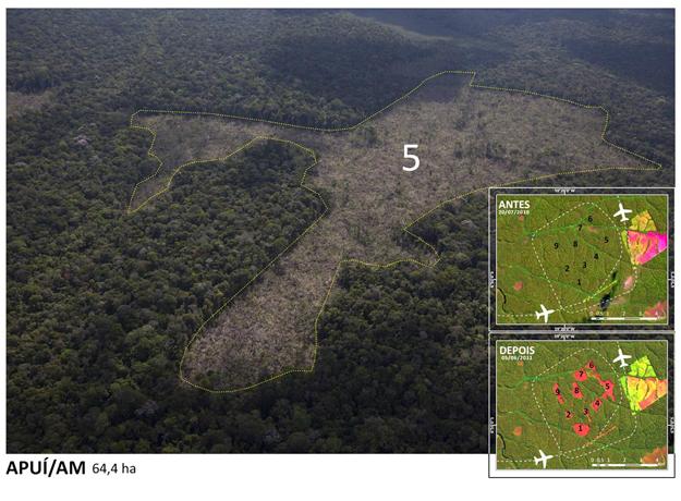 Área desmatada na região de Apuí (AM) (Foto: Divulgação/Greenpeace/Marizilda Cruppe/EVE)