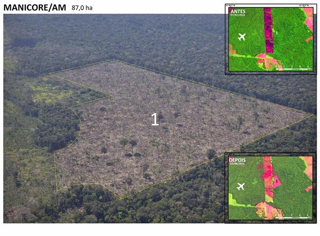 Região da floresta amazônica devastada em Manicoré (AM) (Foto: Divulgação/Greenpeace/Marizilda Cruppe/EVE)