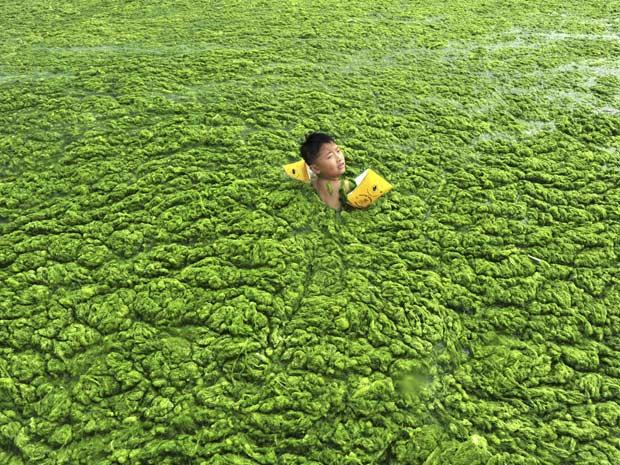 Criança entre em praia com algas na China (Foto: China Daily/Reuters)