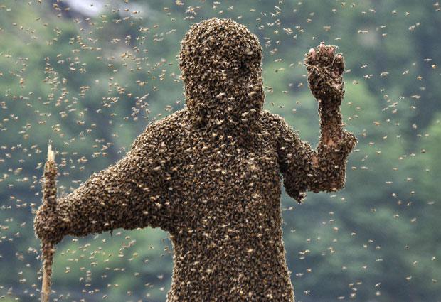 Wang foi o vencedor após atrair 26 kg de abelhas em 60 minutos, enquanto o adversário atraiu 22,9 kg. (Foto: China Daily/Reuters)
