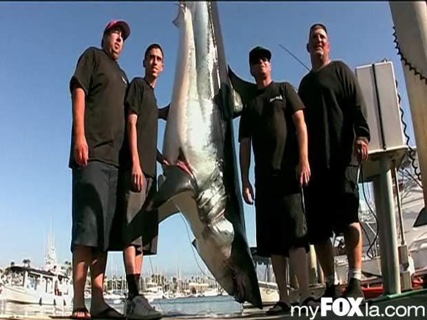 Pescadores venceram competição ao pescar tubarão de 3,3 metros e 390 kg. (Foto: Reprodução/Fox)