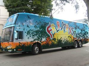 Ônibus usado pela banda Falamansa (Foto: Arquivo da banda Falamansa)