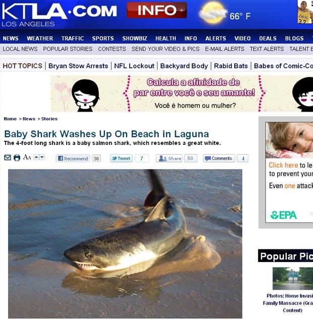 Tubarão foi encontrado em Laguna Beach. (Foto: Reprodução)
