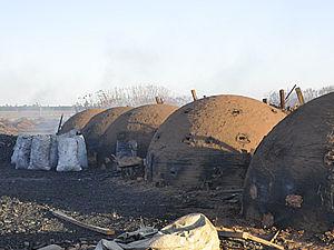 Ibama apreende 750 sacas de carvão e destrói fornos de carvoaria em MT (Foto: Divulgação / Ibama)