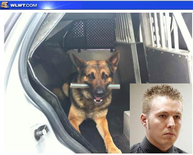Ryan Stephens pode pegar 2 meses de cadeia por latir para  cão. (Foto: Reprodução)