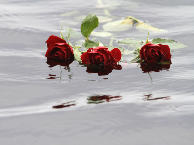 Rosas jogadas na água próximo ao local do tiroteio são vistas nesta terça-feira (26) próximo à ilha (Foto: AP)