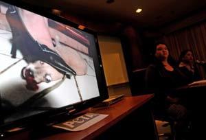 Apresentação da Peta mostrou trechos dos vídeos cruéis. (Foto: AFP)