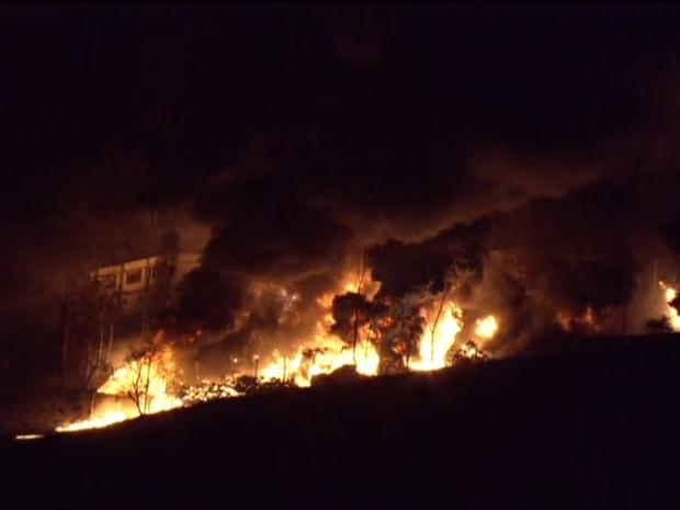Fogo atinge empresa de combustíveis (Foto: Reprodução/TV Globo)