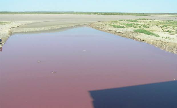 Lago OC Fisher está próximo de secar completamente. (Foto: Texas Parks and Wildlife Inland Fisheries/Divulgação)
