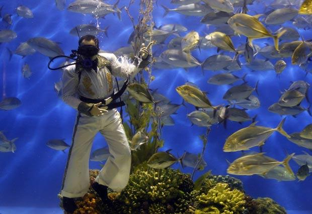 Mergulhador fez homenagem ao aniversário da morte do 'Rei do Rock'. (Foto: Romeo Ranoco/Reuters)