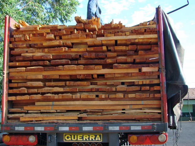 Um dos caminhões flagrados transportando madeira extraída de forma ilegal em estradas federais de Goiás (Foto: Divulgação/Ibama)