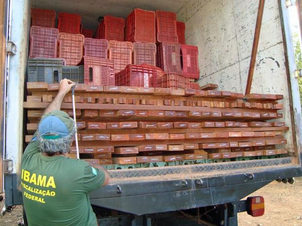 Em uma das apreensões, veículo utilizava caixas para esconder carga ilegal de madeira (Foto: Divulgação/Ibama)