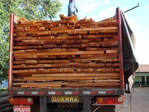 Seis caminhões transportando madeira de forma ilegal foram apreendidos (Foto: Divulgação/Ibama-GO)