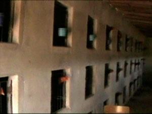 Apreensão de galos de rinha na Bahia (Foto: Reprodução/TV Sudoeste)