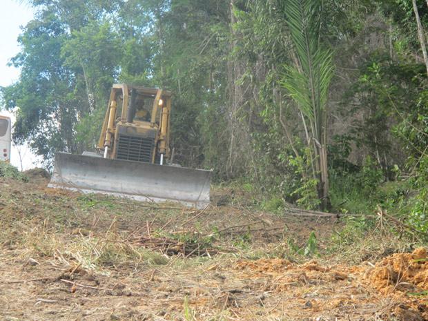 Trator utilizado para derrubada de árvores na região onde será construída a hidrelétrica de Belo Monte (Foto: Mariana Oliveira / G1)