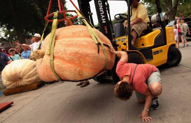 Concurso foi realizado na feira agrícola do estado do Iowa. (Foto: Chip Somodevilla/Getty Images/AFP)
