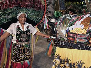 Festa do Boi de Seu Teodoro será realizada até domingo (21) em Sobradinho (Foto: Divulgação)