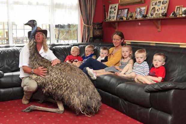 Ema chamada 'Beaky' é como um 7 º filho para Iain e Lisa. (Foto: Nick Obank/Barcroft Media/Getty Images)