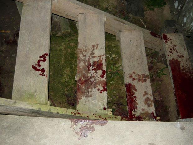 Rastro de sangue deixado por onça pintada após atacar cadela da Funai (Foto: Arquivo pessoal/José Carlos dos Reis Meirelles)