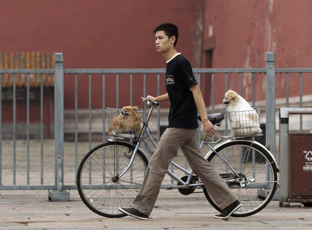 Jovem foi flagrado nesta quinta-feira (25) levando cães para passear em uma bicicleta. Cena foi fotografada uma área central de Pequim, na China.  (Foto: Jason Lee/Reuters)