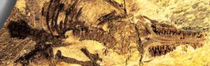 Fóssil revela mamífero com placenta mais antigo (N. Matsunaga)