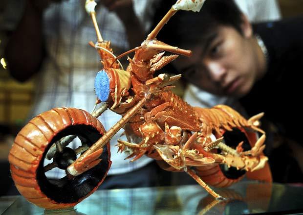 Huang Mingbo fez uma escultura de uma motocicleta utilizando casca de lagostas. (Foto: AP)