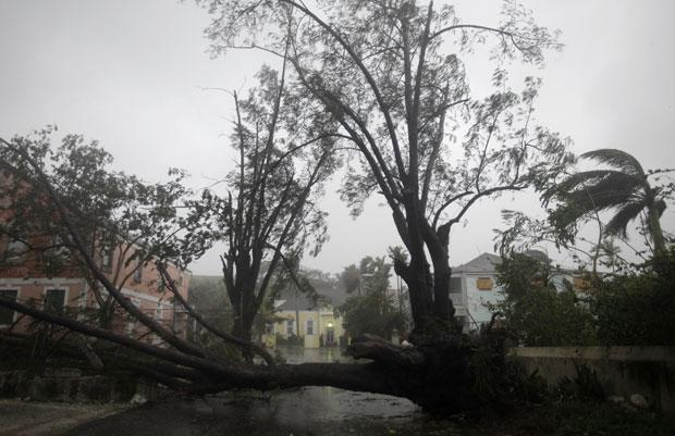 A chegada do furacão deixou árvores caídas nesta quinta (25) no leste de Nassau, nas Bahamas (Foto: Lynne Sladky/AP)