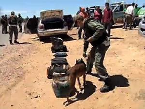 Operação da PM fiscaliza divisa entre Ceará e Paraíba (Foto: Reprodução/TV Verdes Mares)