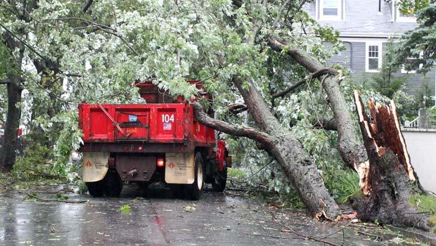 Árvore caída sobre caminhão em Florence, no estado americano de Rhode Island, após a passagem de Irene neste domingo (28) (Foto: AP)