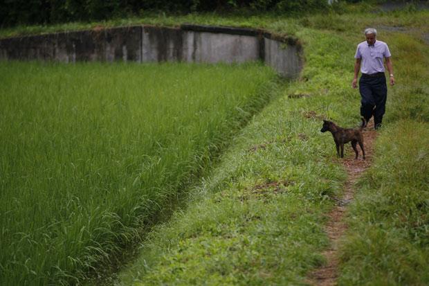 O fazendeiro Naoto Matsumura e seu cachorro Aki retorna de sua plantação de arroz em Tomioka, na província de Fukushima, nordeste do Japão (Foto: Hiro Komae / AP)