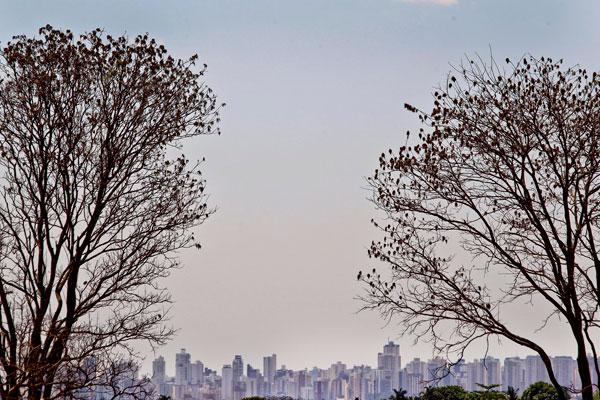 Tempo seco castiga Goiânia (Foto: Wildes Barbosa/O Popular)