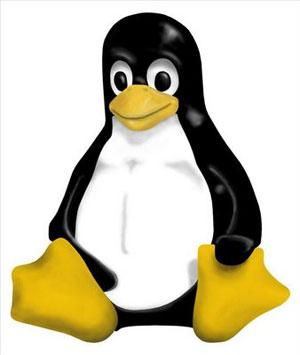 Linux não está imune aos vírus de boot, mas pragas não existem (Foto: Divulgação)