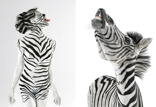 Modelo Jasmina repete pose de uma zebra. (Foto: Lennette Newell/Bacroft USA/Getty Images)