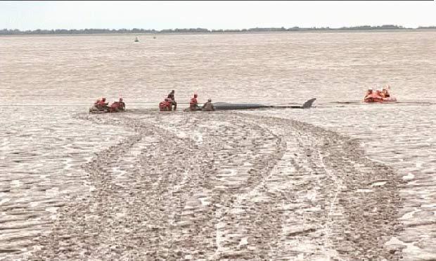 Cerca de 50 bombeiros, salva-vidas e especialistas participaram do resgate. (Foto: BBC)