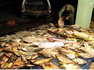 Pescado Irregular São Lourenço (Foto: PM Ambiental de Rondonópolis)