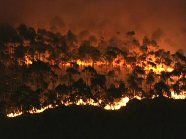 Fogo se alastra na mata (Foto: Reprodução/TV Globo)