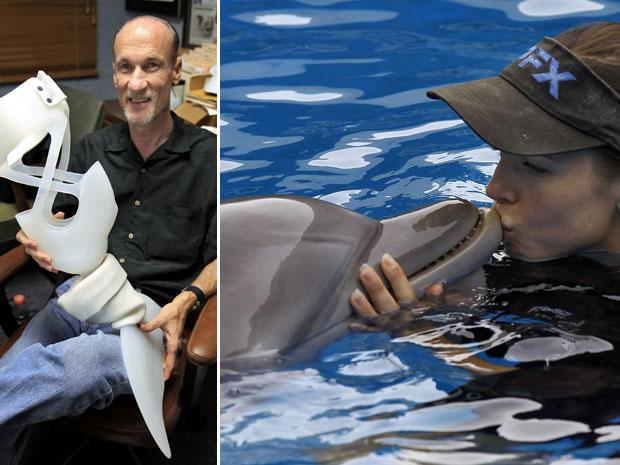 O diretor do aquário, David Yates, mostra a prótese de Winter. à direita, treinadora beija o golfinho fêmea (Foto: AP)