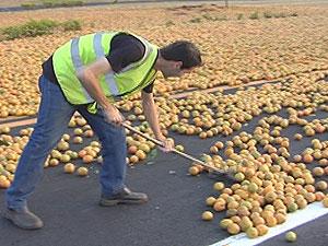 Funcionários da concessionária usaram vassouras para limpar a pista (Foto: Reprodução/TV Tem)