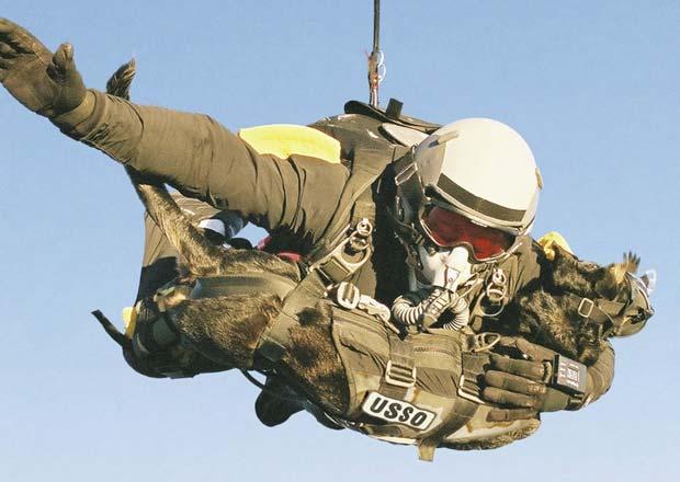 Em março de 2011, o militar americano Mike Forsythe quebrou o recorde mundial de salto de para-quedas com um cão. Forsythe saltou com seu animal de estimação chamado 'Cara' a 9.174 metros de altitude. (Foto: K9 Storm Inc./Reuters)