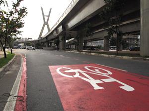 Ciclorrotas são alternativas para ciclistas nas ruas de São Paulo (Foto: Fabiano Correia/ G1)