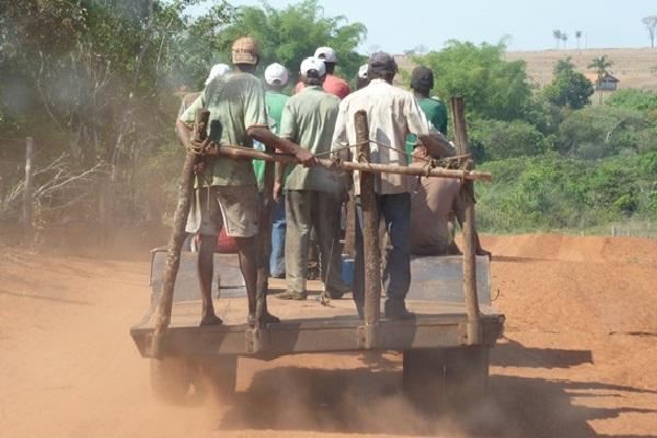 Trabalhadores foram aliciados em Minas Gerais, para onde serão reconduzidos.  (Foto: Divulgação/SRTE-GO)